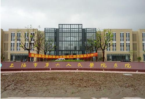 上海市第六人民医院(临港新城分院)
